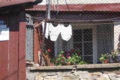 veliko_clothesline_2