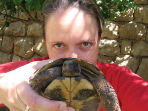 me-turtle.jpg