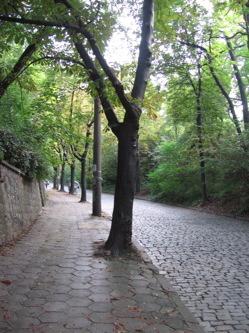 walk-1.jpg