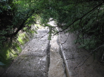walk-5.jpg