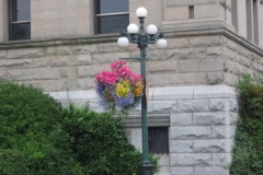 downtown_victoria_flowers