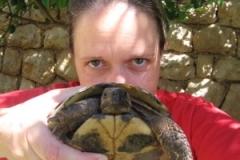 croatia_dubrovnik_turtles_me
